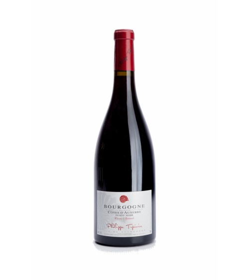 Bourgogne Rouge Côte...